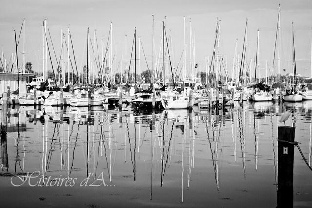 bateaux à St. Petersburg, Floride
