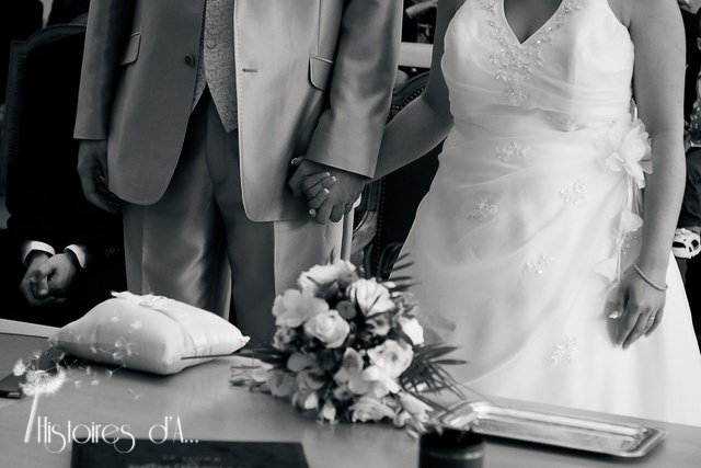 Reportage photo mariage Champs sur marne (20)-13
