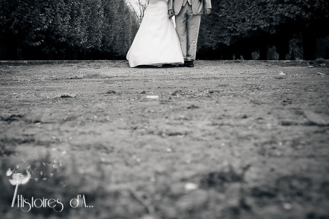 Reportage photo mariage Champs sur marne (43)-38