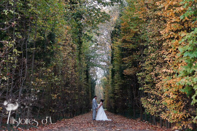 Reportage photo mariage Champs sur marne (46)-41