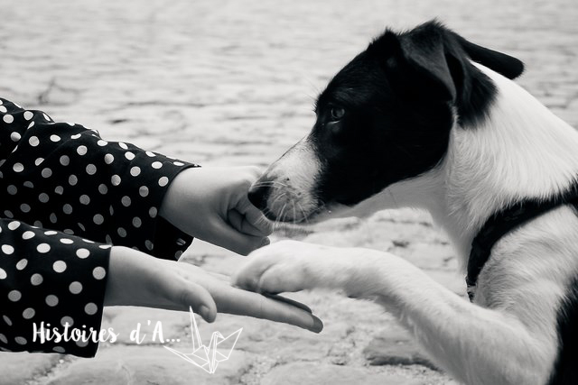 séance photo entre copines - histoires.d.aline.free.fr  (21)