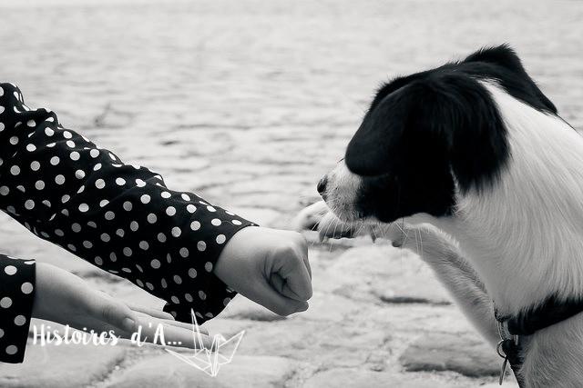 séance photo entre copines - histoires.d.aline.free.fr  (22)
