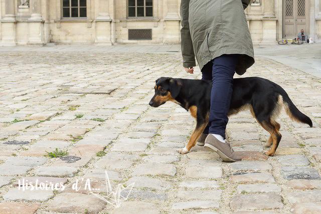 séance photo entre copines - histoires.d.aline.free.fr  (28)