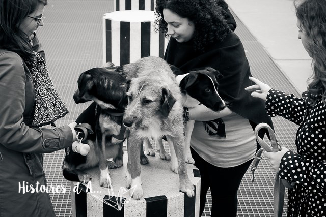 séance photo entre copines - histoires.d.aline.free.fr  (49)