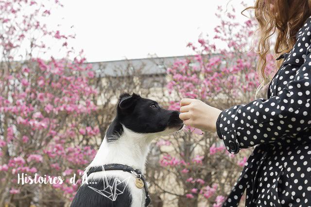 séance photo entre copines - histoires.d.aline.free.fr  (60)
