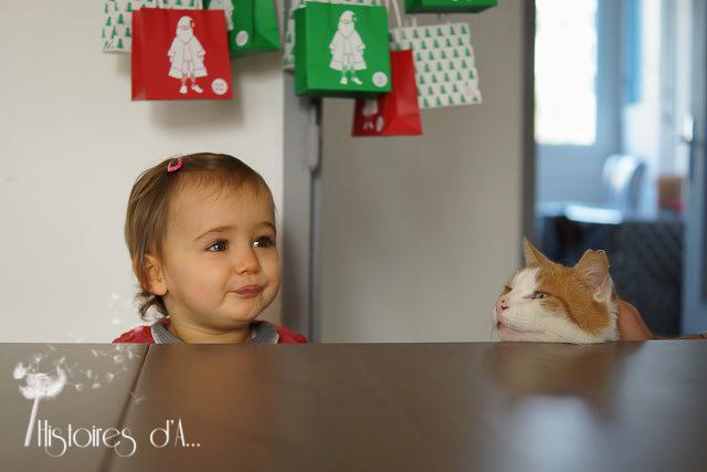 séance photo famille essonne - histoires d'a photographe (14)