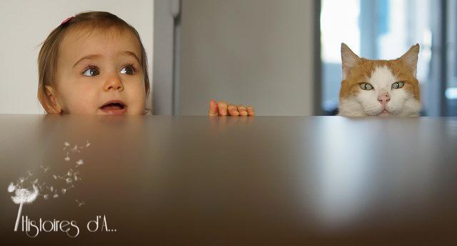 séance photo famille essonne - histoires d'a photographe (15)