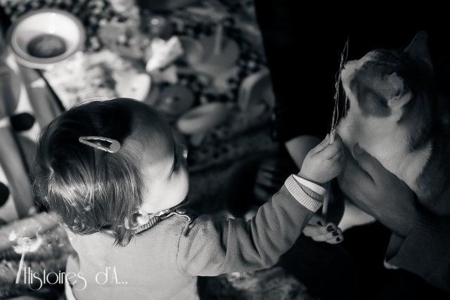 séance photo famille essonne - histoires d'a photographe (4)
