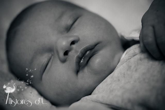 séance photo nouveau-né - histoires d'a photographe (21)