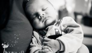 séance photo nouveau-né - histoires d'a photographe (4)