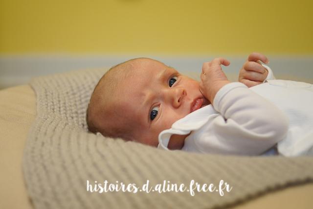 séance photo nouveau né val de marne - histoires d'a photographe (23)
